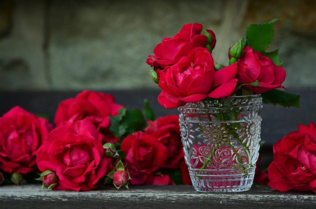 ¿Cómo Secar Rosas?