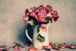 Comprar flores secas