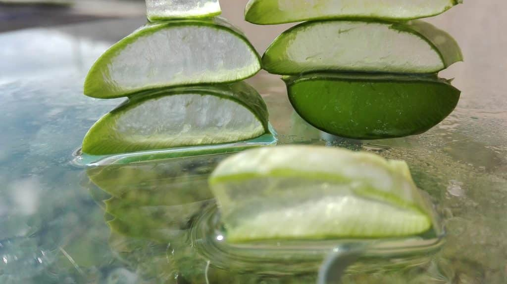 Cómo Hacer Crema De Aloe Vera Casera Y Natural